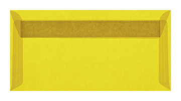 11 x 22 cm Striplock (EA5)