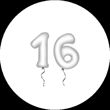 Sluitzegel verjaardag-51