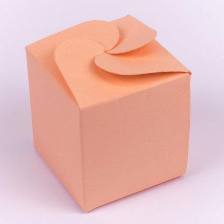 Candy Box Apricot