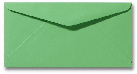 Envelop 11 x 22 cm Weidegroen