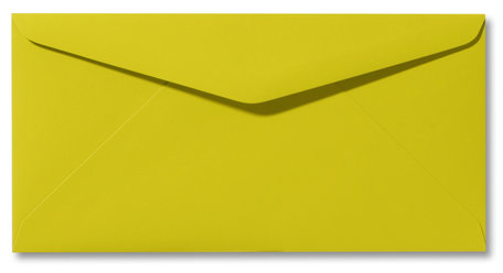 Envelop 11 x 22 Softskin Lime